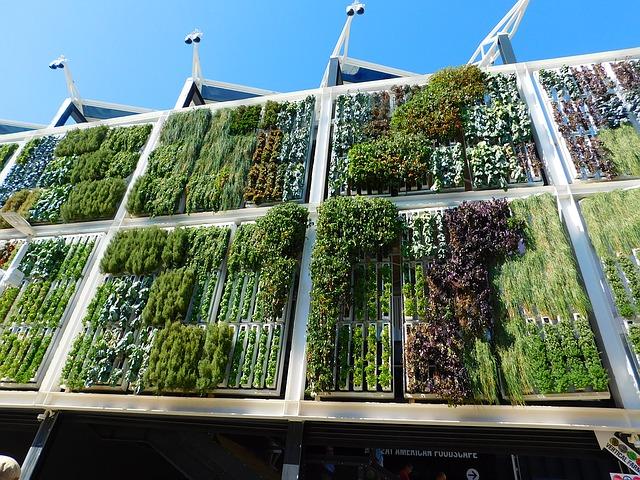 jardin vertical casero jardines verticales caseros aprende a dise arlos y mantenerlos originales ideas Cómo hacer un jardín vertical casero y económico en casa