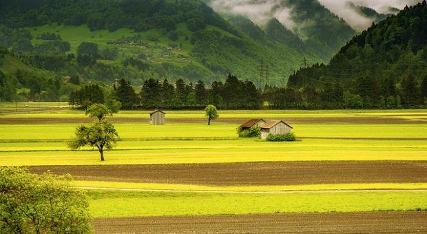 Cómo tasar un terreno y evaluar sus características constructivas