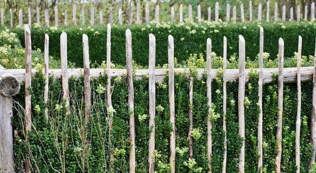 5 propuestas ideales sobre cómo decorar un jardín pequeño