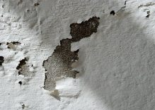 Cómo arreglar una pared con humedad y prevenir su reaparición